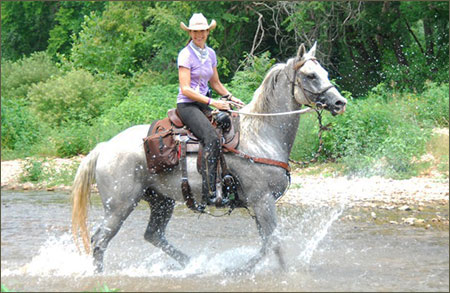 Horse back riding lessons in TN